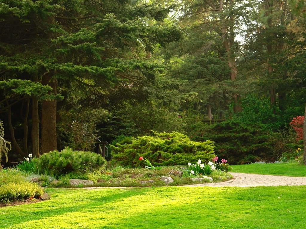 Beautiful Garden Hd Desktop Natural Wallp 18540 Wallpaper 1024x768