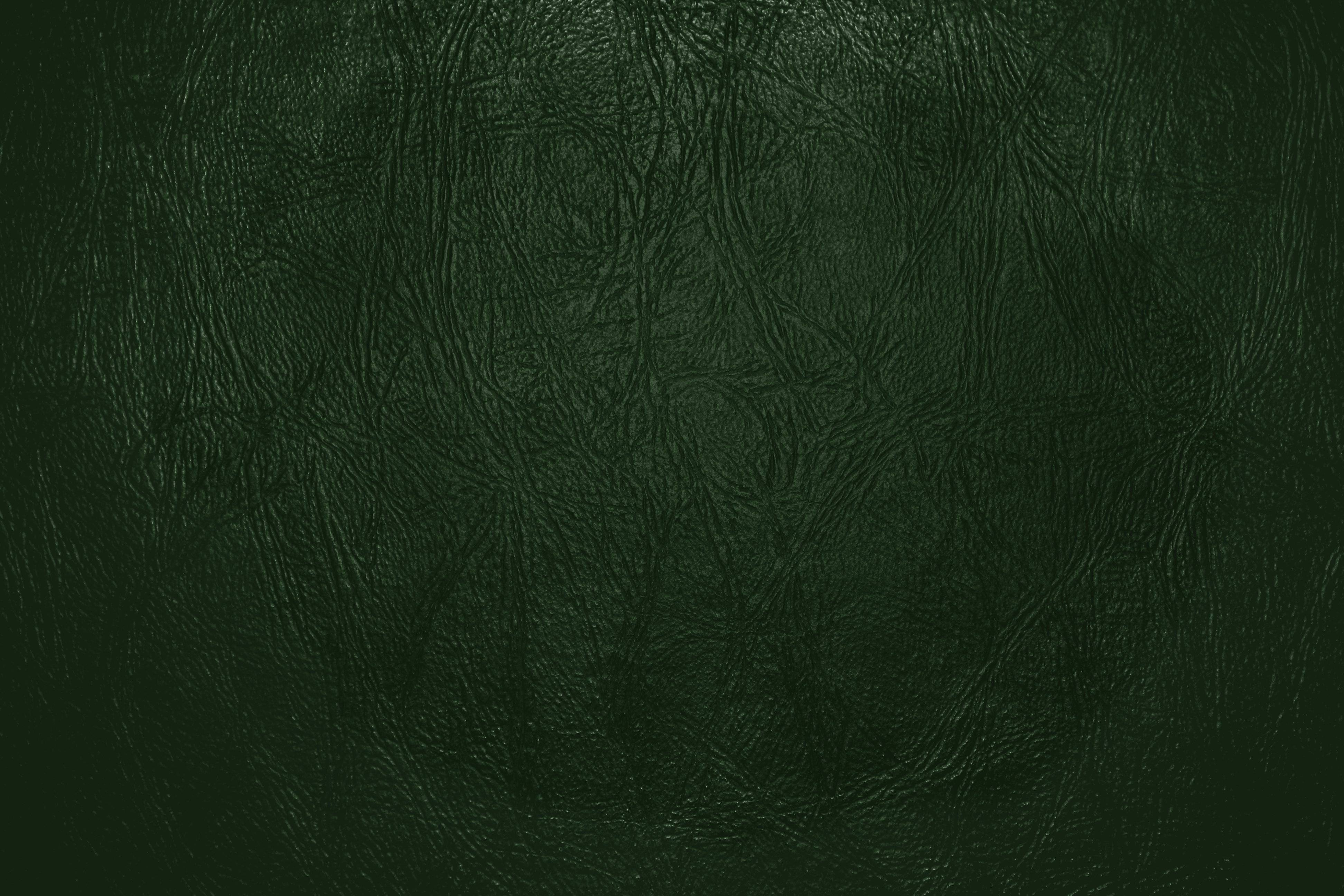 Forest Green Backgrounds 3888x2592