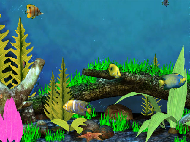 Fish Aquarium 3D Screensaver beautiful large 3D aquarium with 640x480