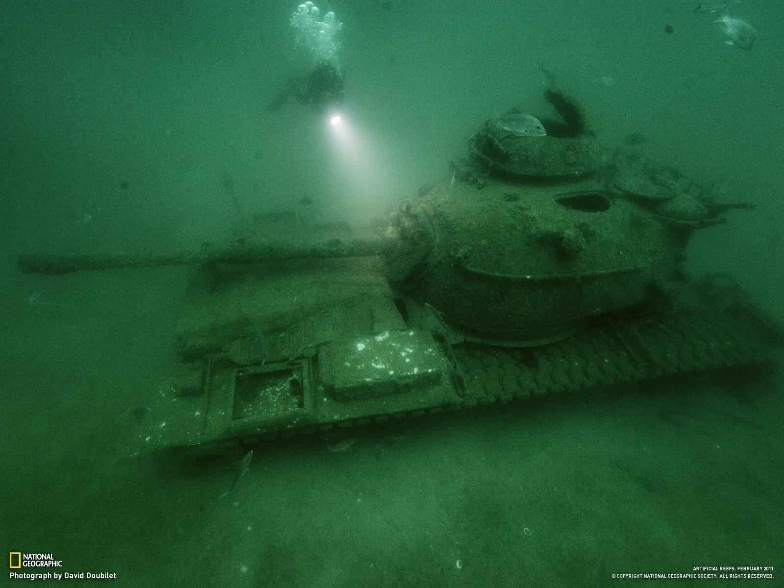 Deep Sea Tank Wallpapers 1600x1200