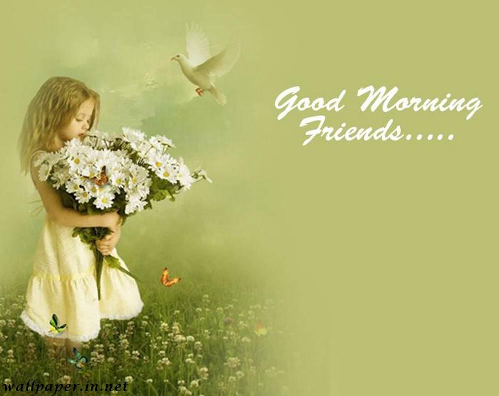 Good Morning Wallpaper Free Download Wallpapersafari