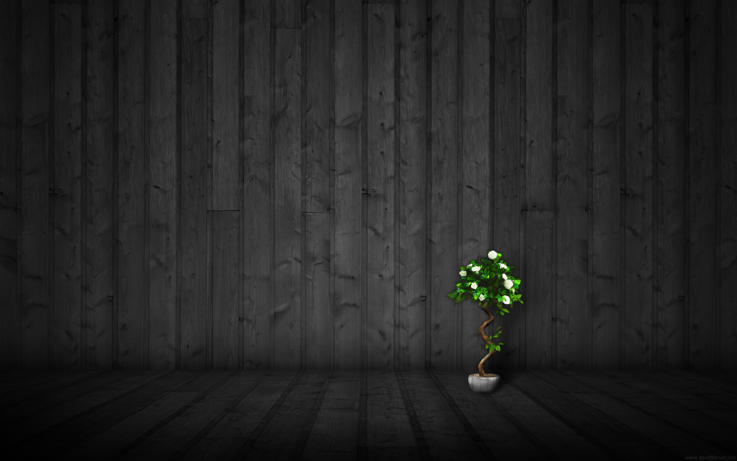 Theme Bin Blog Archive Dark Wood 2 HD Wallpaper 2560x1600