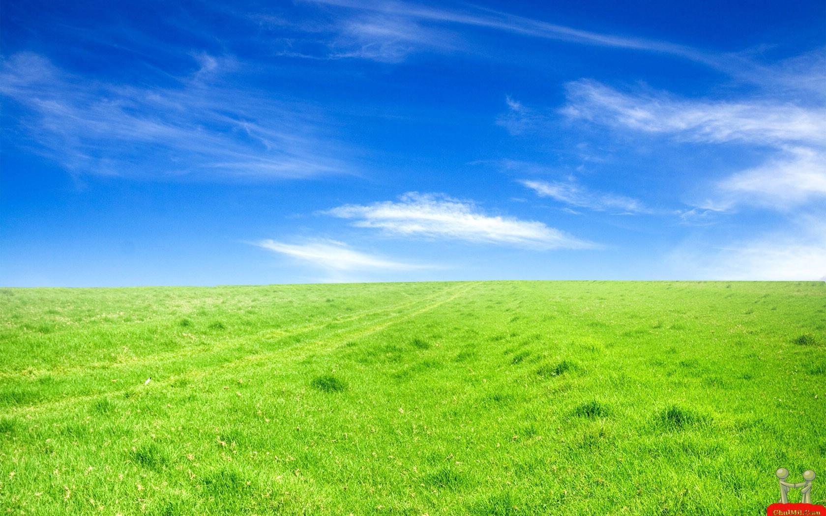 Greenery Scenery Desktop Wallpapers HD Wallpapers Download 1680x1050
