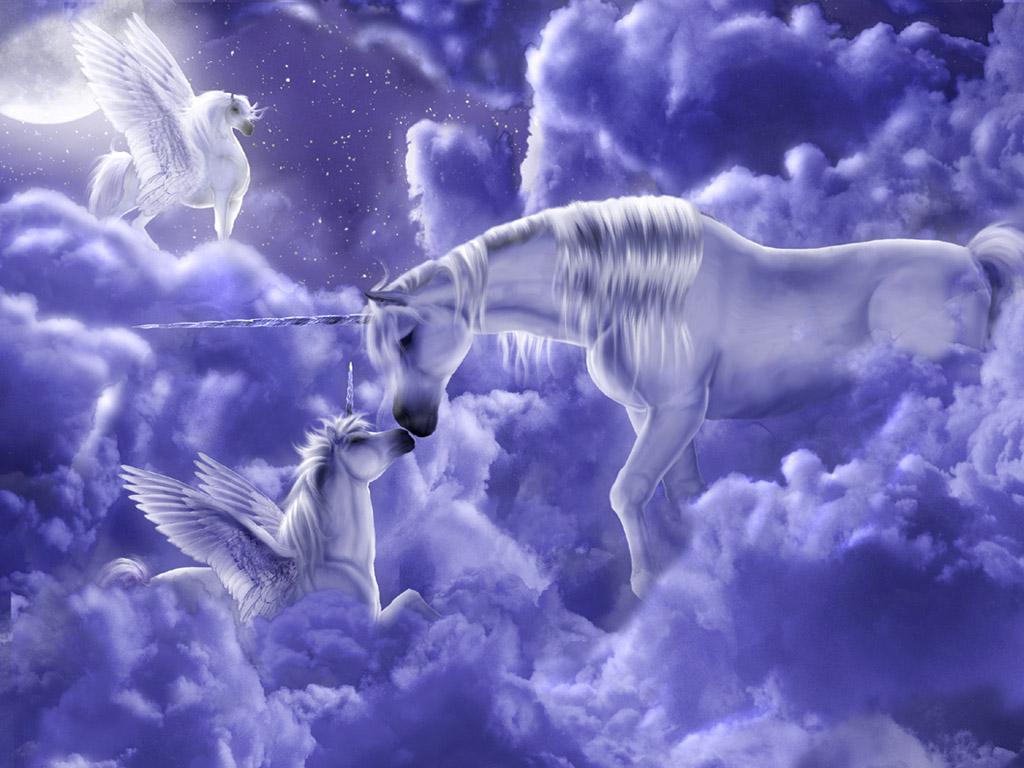 Imagini de Fundal cu Unicorni Poze Super Misto 1024x768