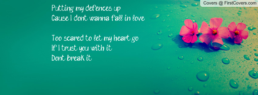 my defences upCause I dont wanna fall in loveToo scared to let my 850x315