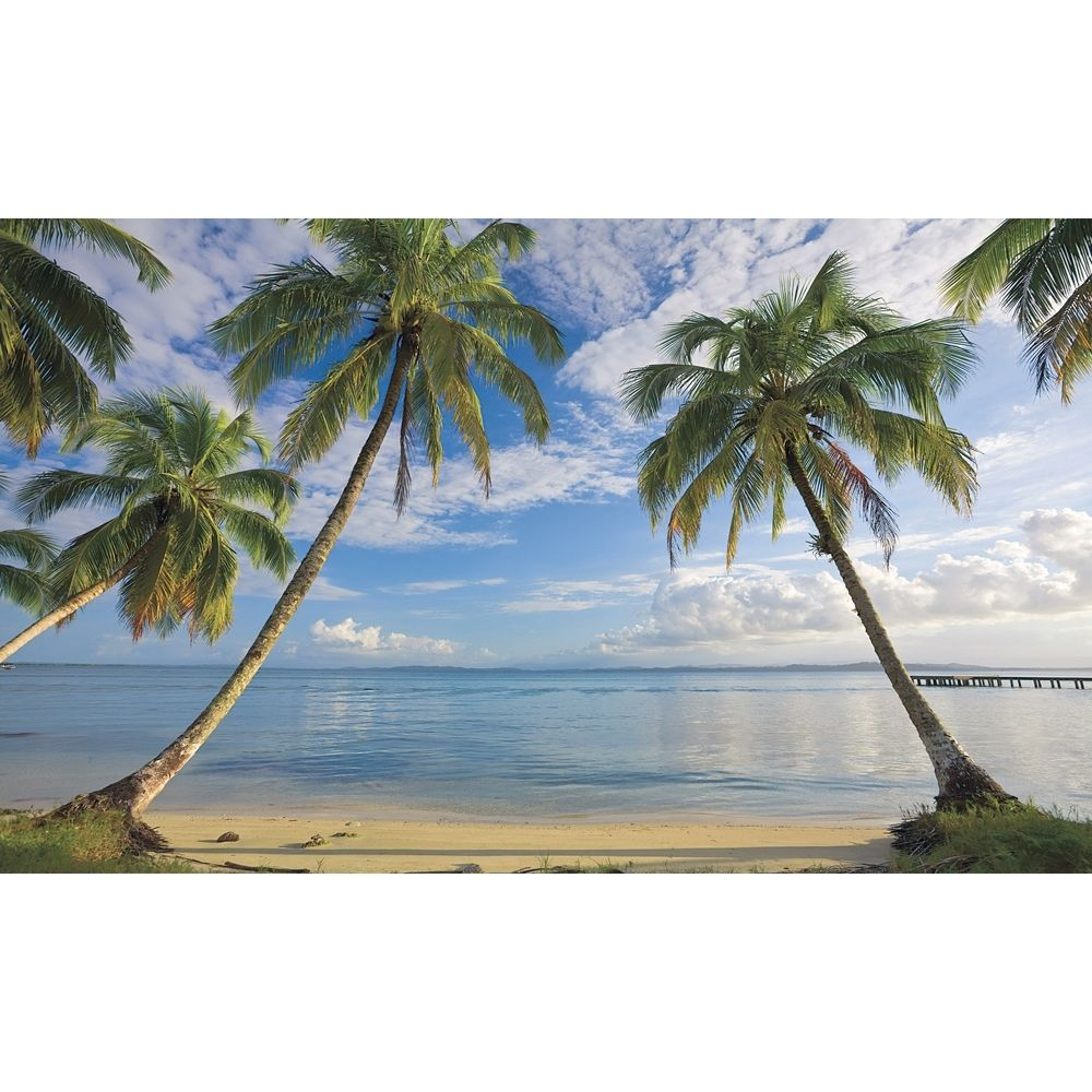 New XL Beach Wallpaper Mural Palm Trees Wall Murals Tropical Decor 1000x1000