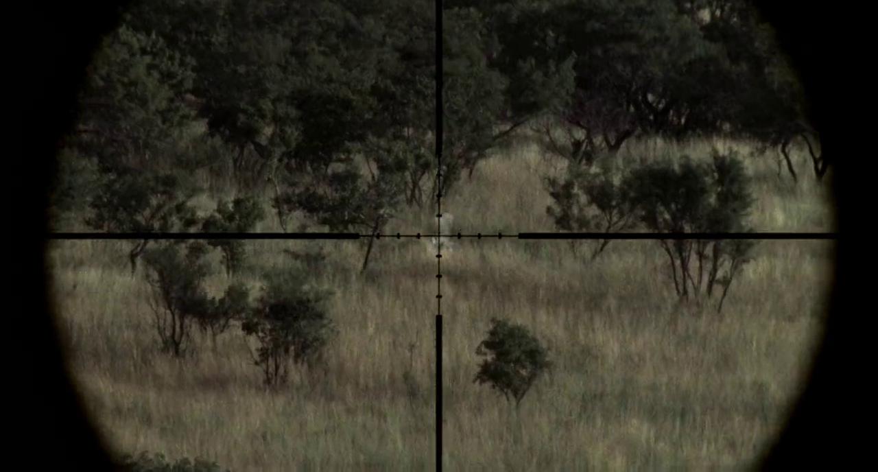 sniper riffles 1 sniper riffles 2 sniper riffles 3 sniper riffles 4 1280x688