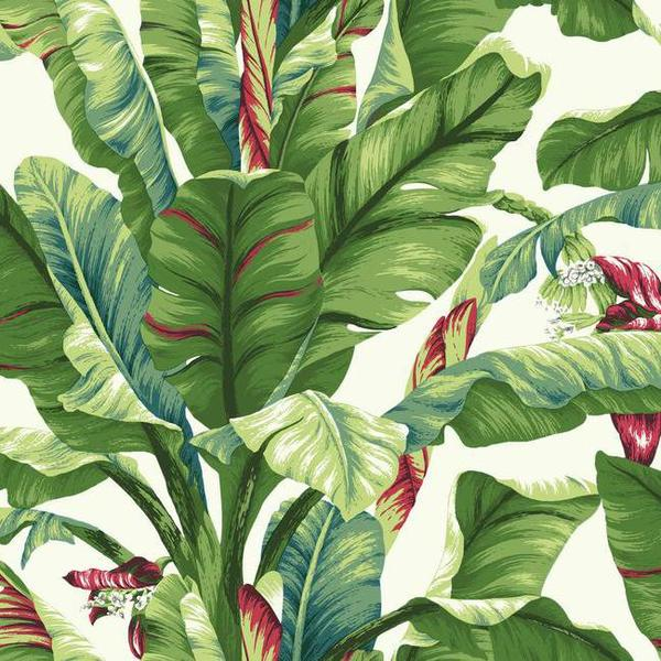 Banana Leaf Wallpaper in Green and Red design by York Wallcoverings 600x600