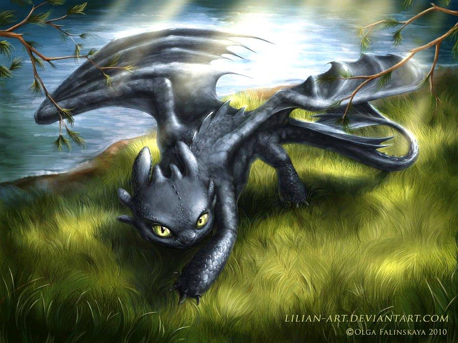 Nightfury glade   Toothless Wallpaper 29117752 900x675