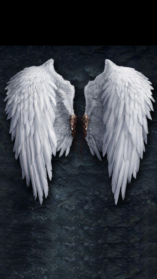 iPhone 5 wallpapers HD   Angel wings Backgrounds 640x1136