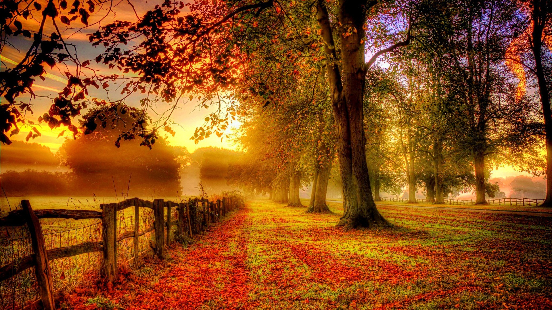 Free Download Autumn Scenery Red Leaves Road Fence Wallpaper Desktop Wallpapers 1920x1080 For Your Desktop Mobile Tablet Explore 45 Fall Scenery Wallpaper Desktop Fall Scenery Backgrounds Fall Scenery Wallpaper