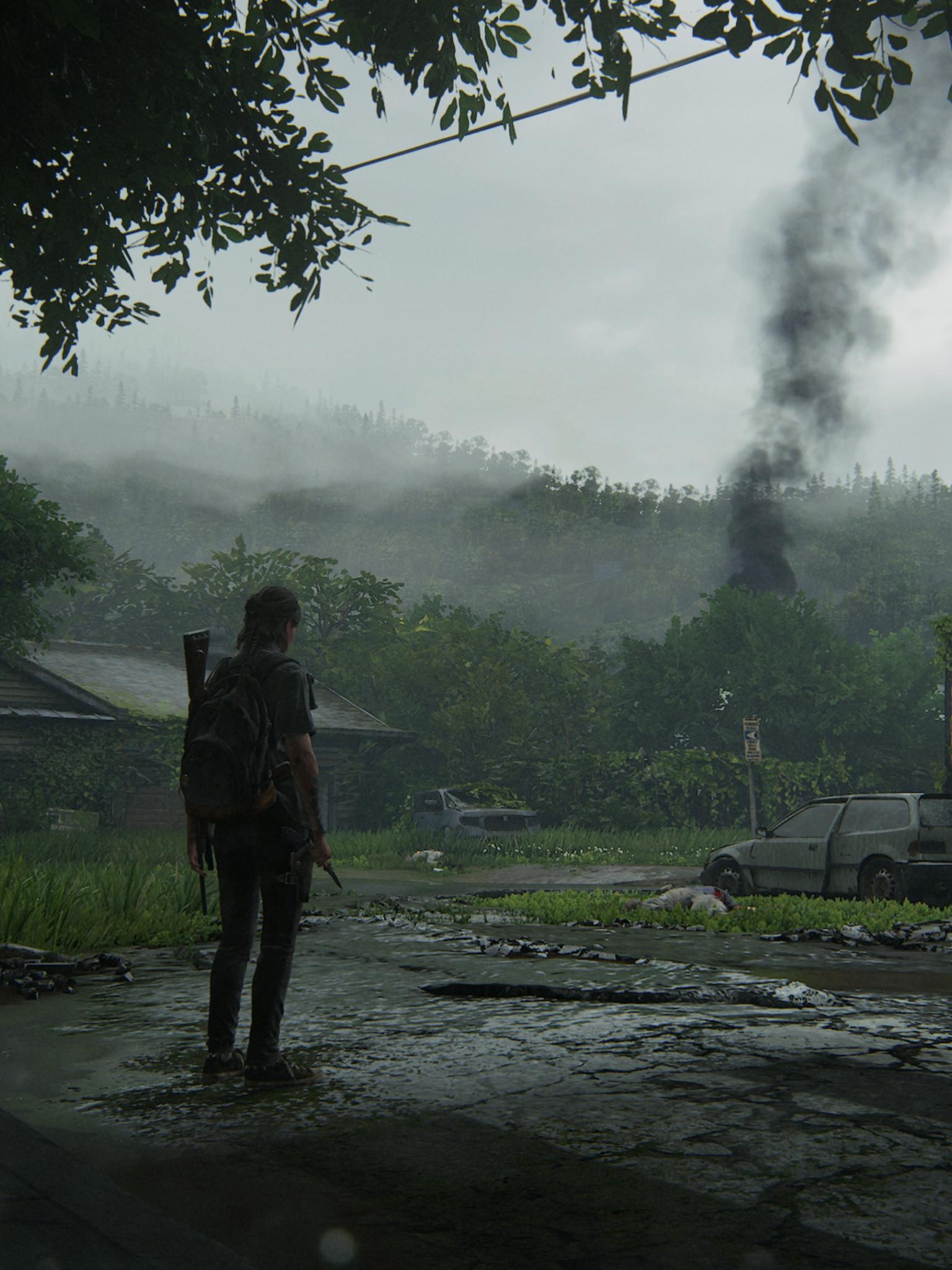 download The Last of Us Part II Wallpaper HD Games 4K 1536x2048