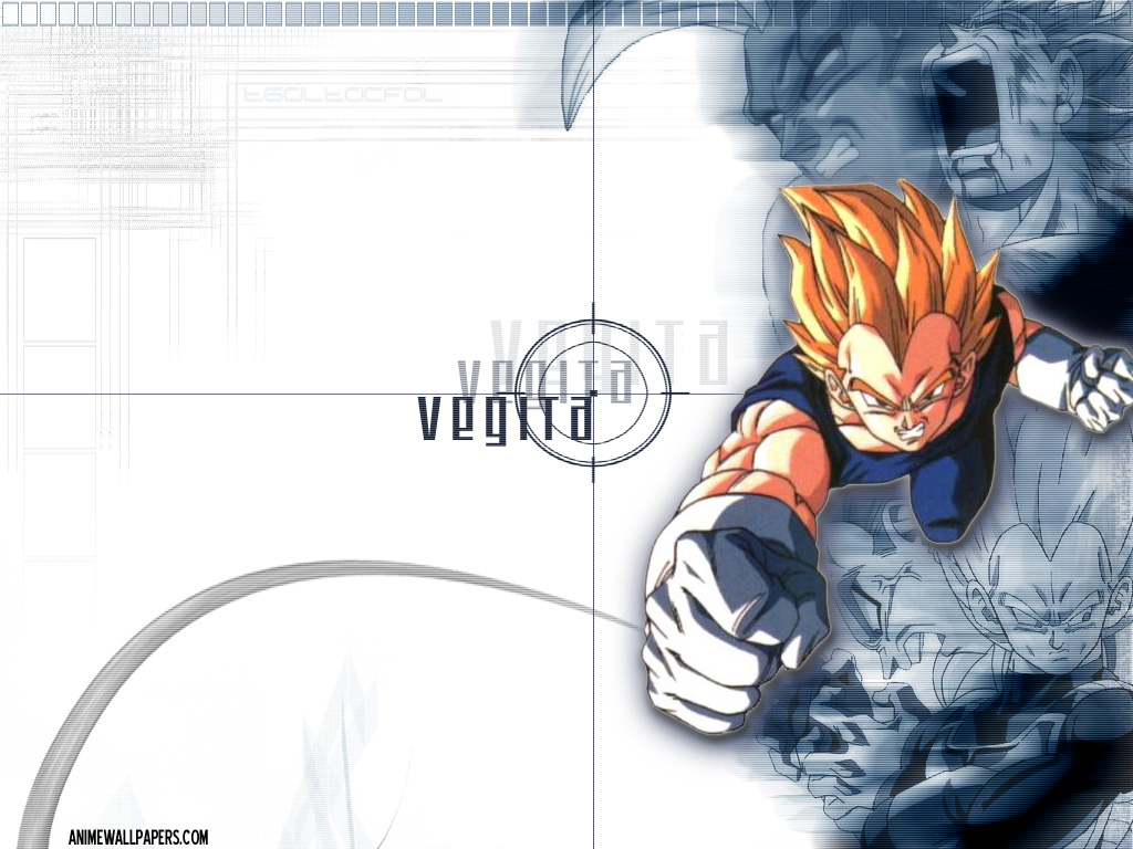 Dragon Ball Z Vegeta Wallpaper Customity 1024x768