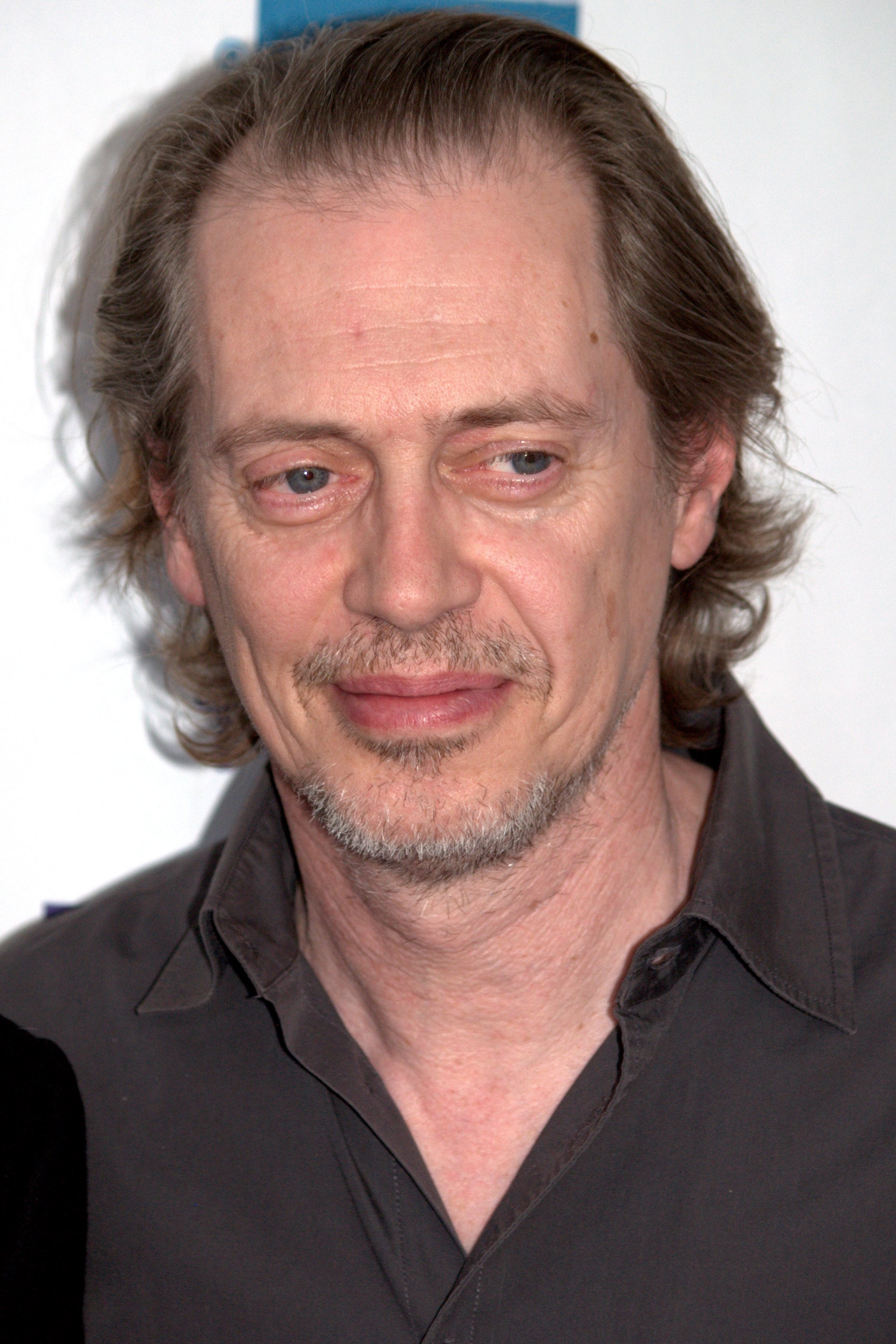 Steve Buscemi HD Wallpapers 7wallpapersnet 2090x3133