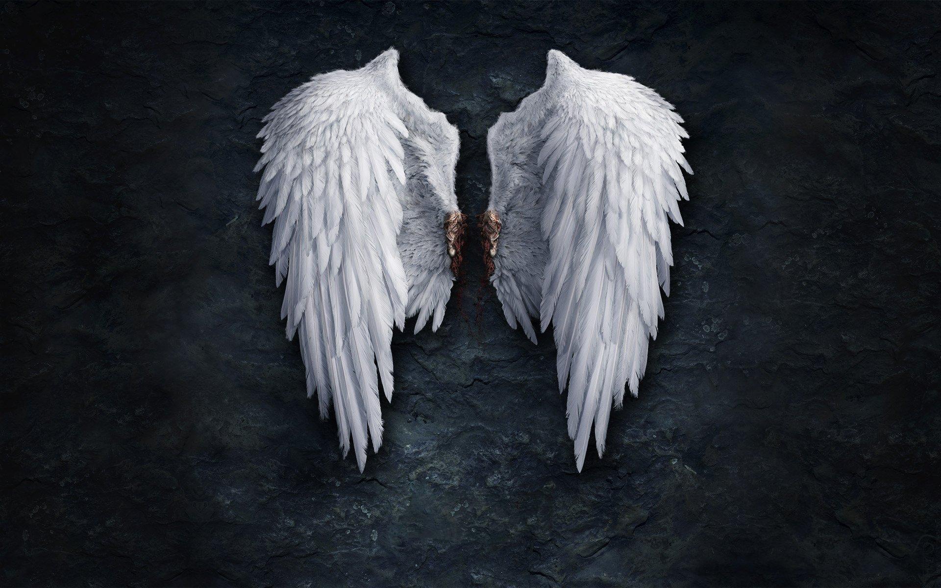 drawing clip art xpx hd blue angel wings wallpaper hd blue angel wings 1920x1200