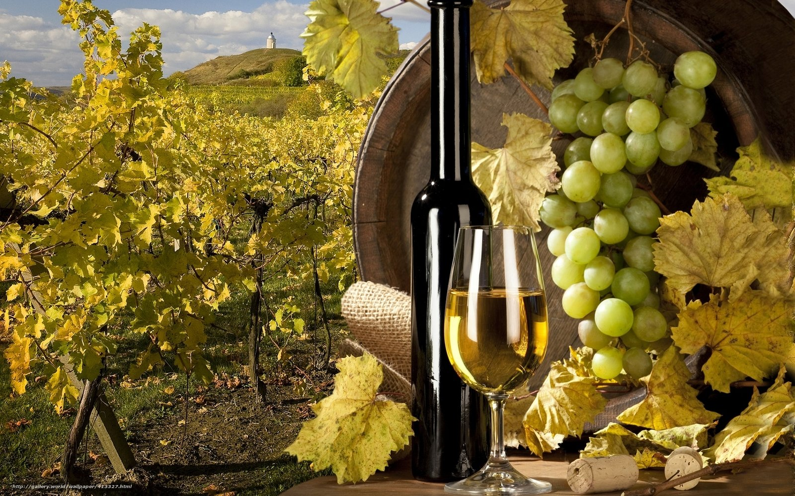 Wine and grapes wallpaper