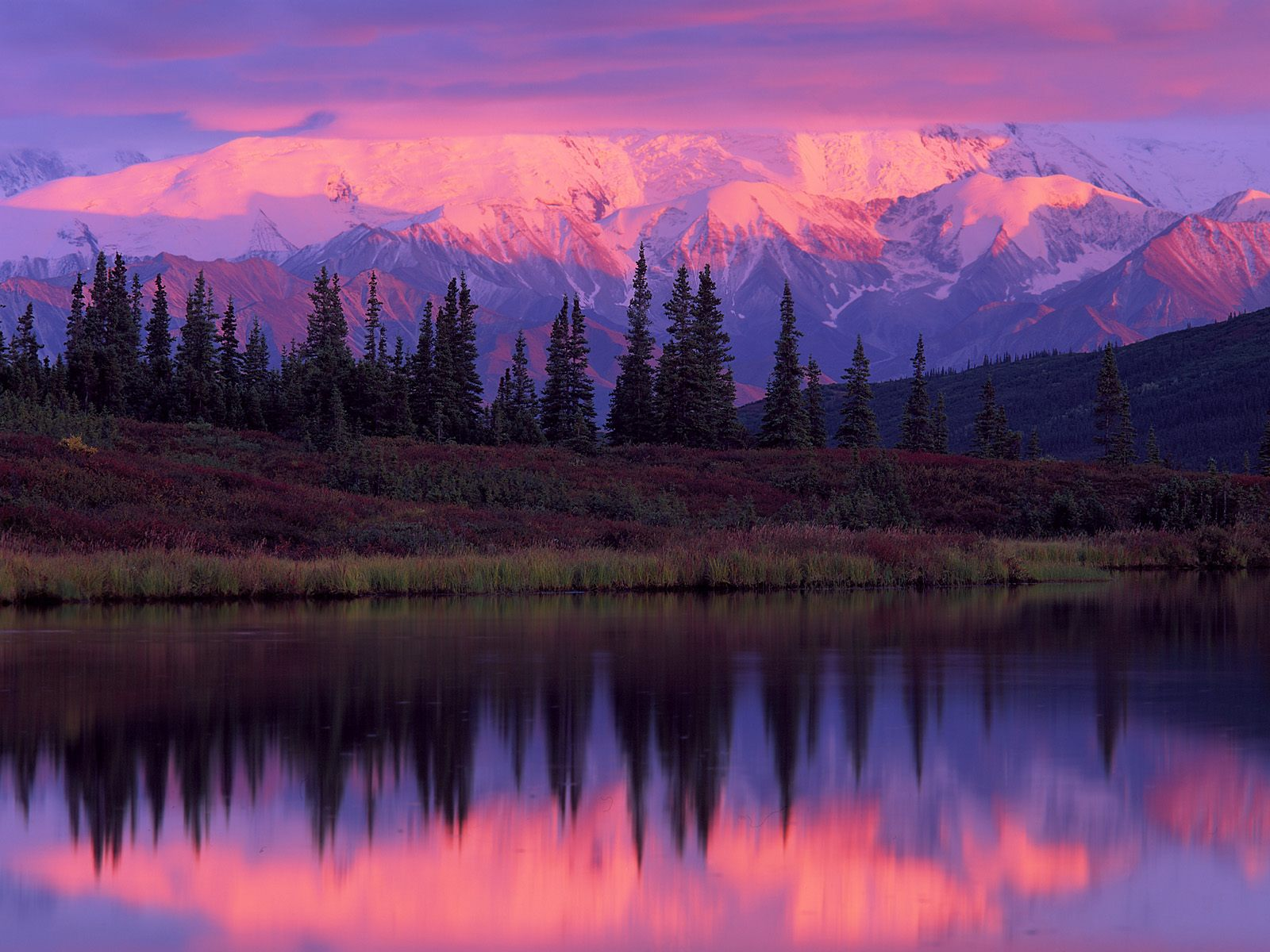 Lake And Alaska Range At Sunset Denali National Park Wallpaper 1600x1200