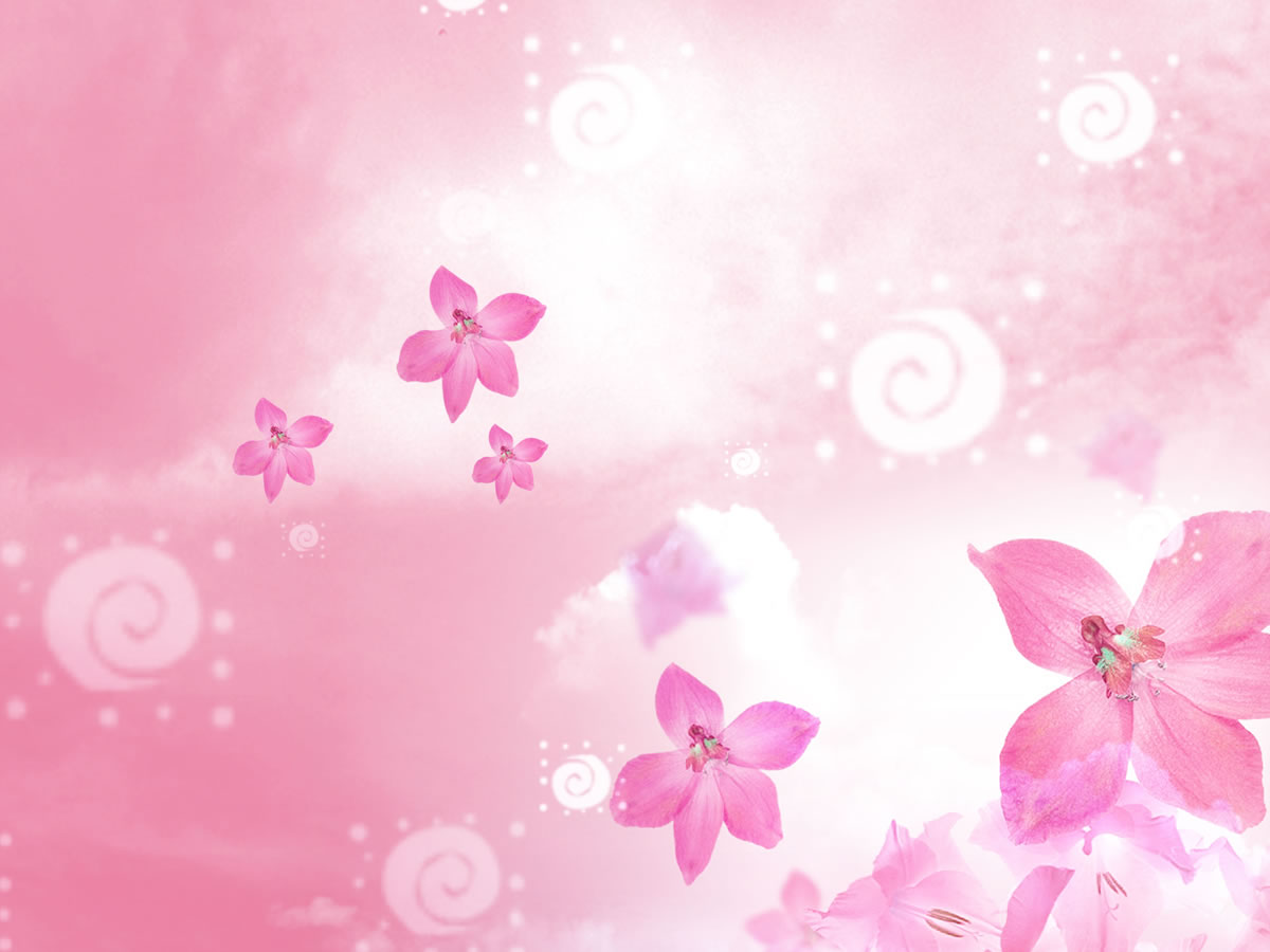Free Download Beautiful Flowers Backgrounds For Powerpoint Flower