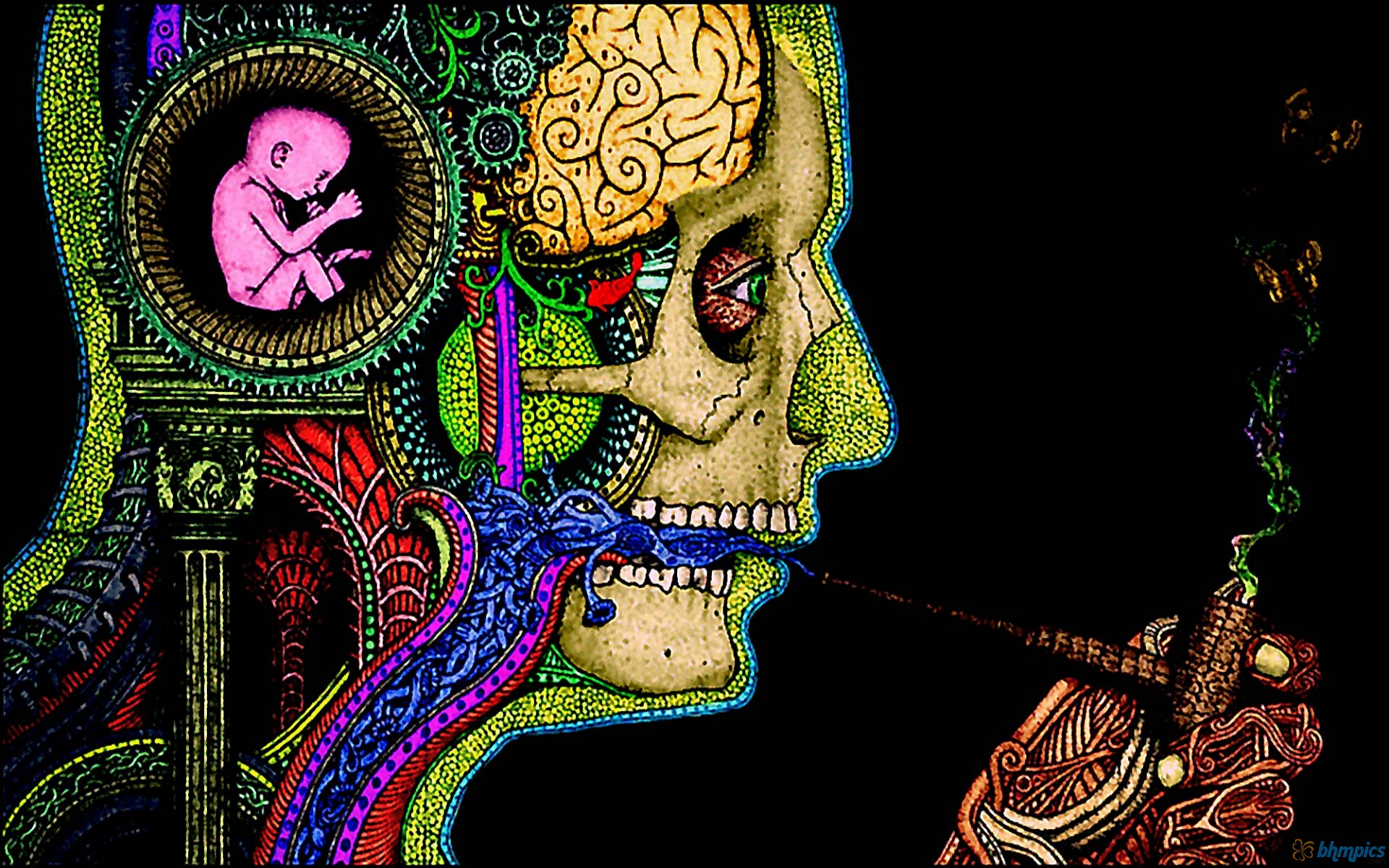 Psychedelic Wallpapers Hd wallpaper   1368062 1920x1200
