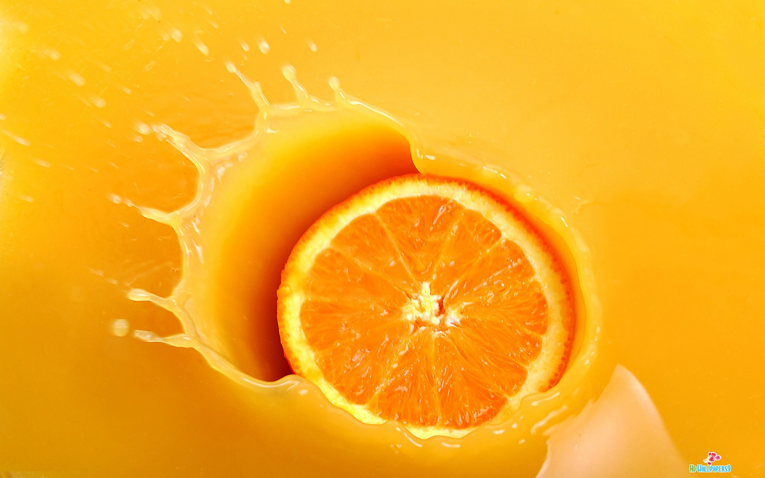 Orange Colored Fruit HD Wallpaper Background Images 2560x1600