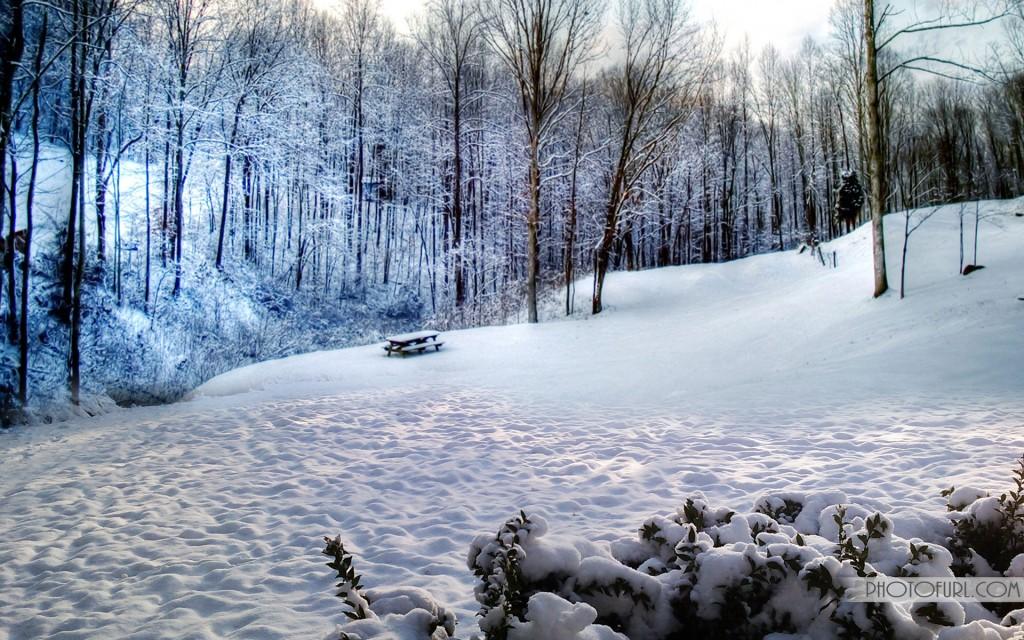 Widescreen Snow Wallpapers