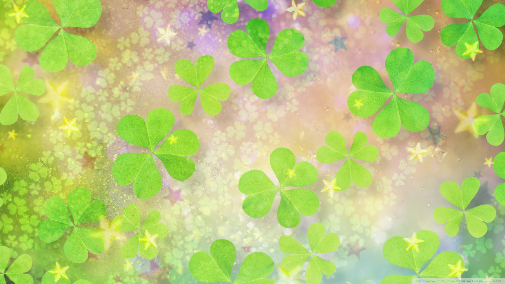 Pink Shamrock Wallpaper Pink clover on 1920x1080