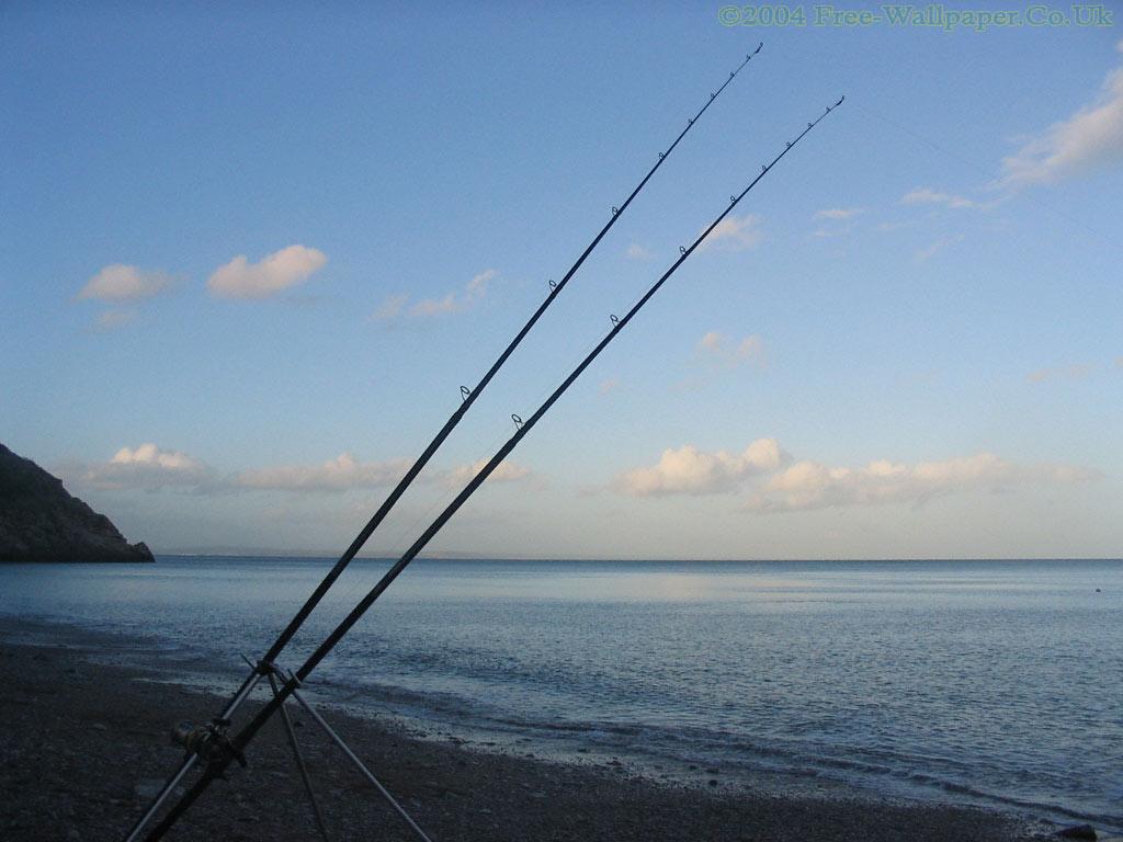 Saltwater Fishing Wallpaper - WallpaperSafari Saltwater Fishing Wallpaper
