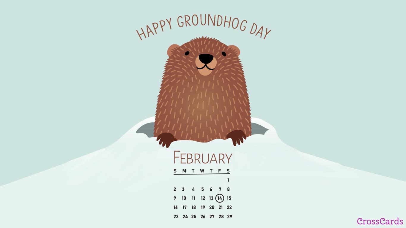 February 2020   Groundhog Day Desktop Calendar  February 1366x768