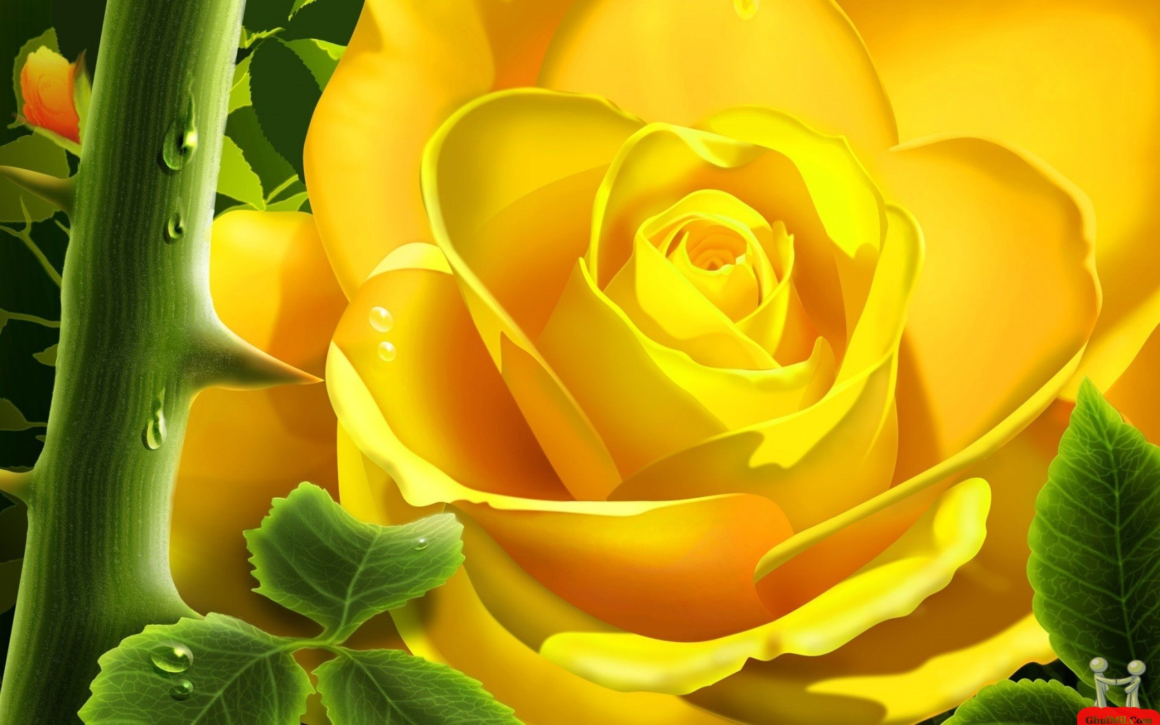 Superb 3D HD Yellow Rose Wallpaper 1680x1050