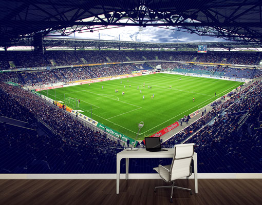 Fleece Wall Mural MSV Duisburg Stadium And Fans Wallpaper Fleece Mural 510x400