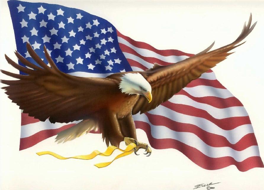 moleskinex19 American Flag Wallpaper 892x640