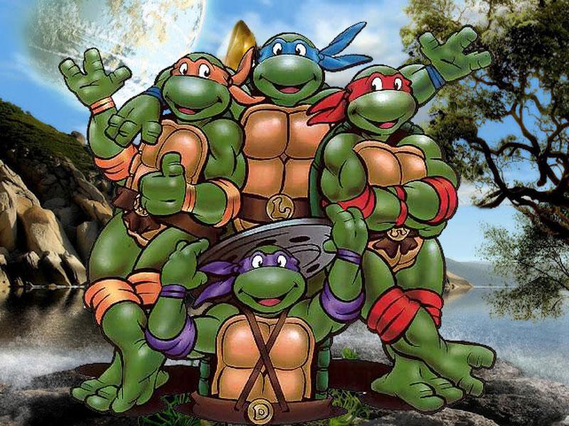 Turtles Cartoon Desktop WallpapersComputer Wallpaper Wallpaper 800x600