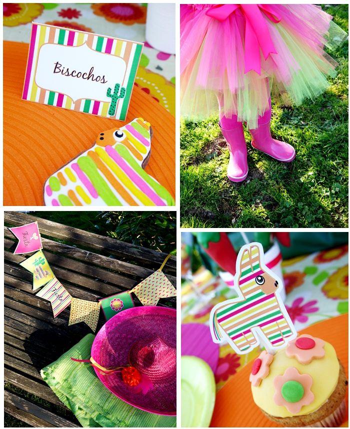 Cinco De Mayo Party Ideas A Mexican Fiesta Birthday Bash 700x858