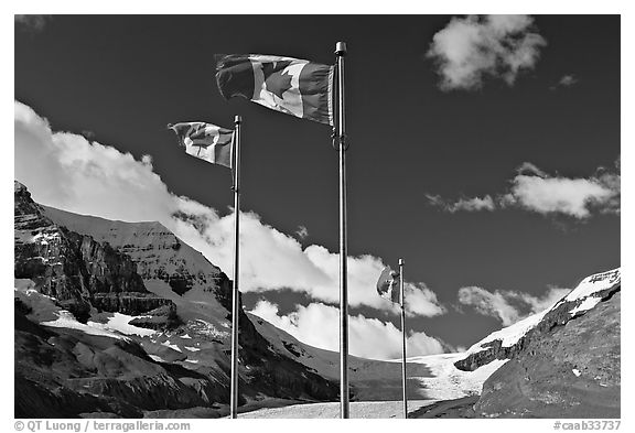 National Park Canadian Rockies Alberta Canada black and white 576x393