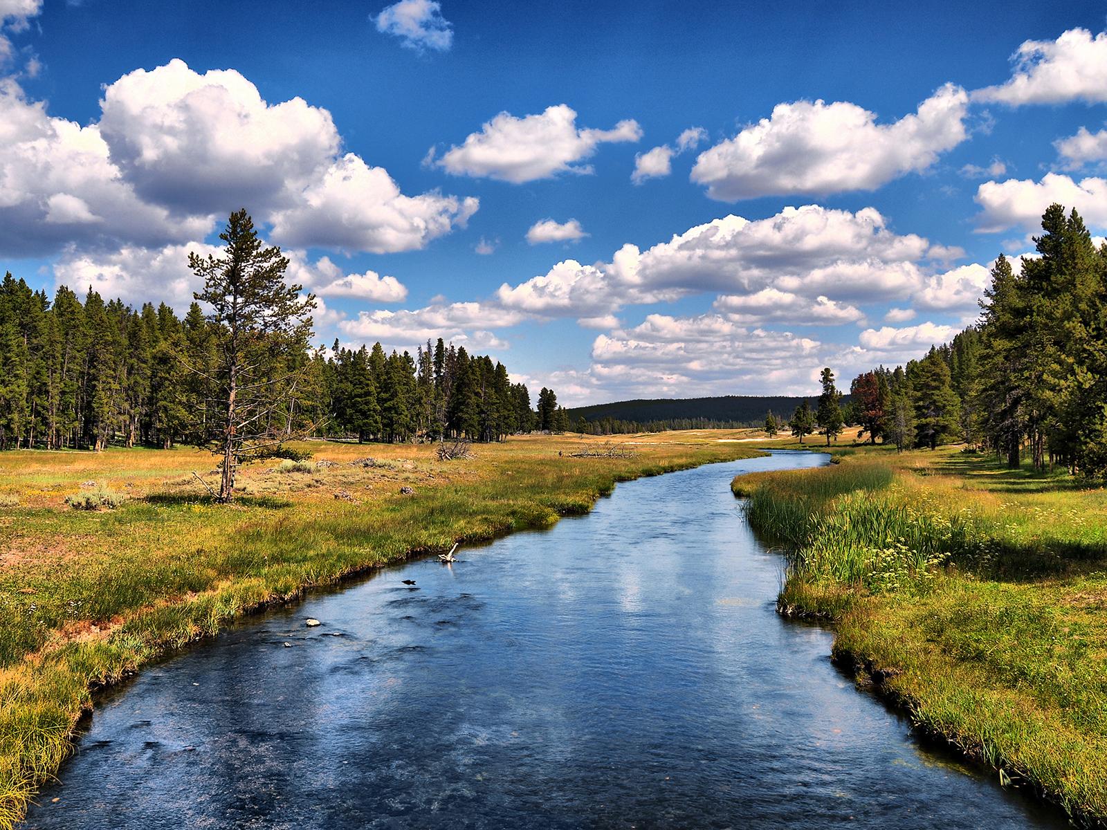 Yellowstone National Park Wallpaper   9379 1600x1200