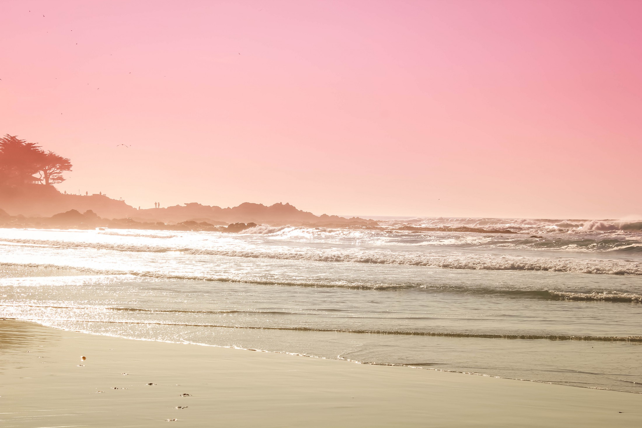 HD Wallpaper Pink sunset over Carmel Beach in Carmel CA 2200x1466