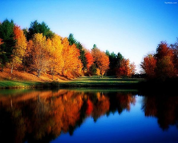 pictures of autumn scenes   Bing Images Holiday Ideas Pinterest 600x480