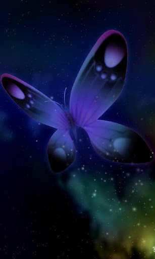 3D Butterflies Wallpapers HD Butterfly wallpaper 3D in HD 307x512