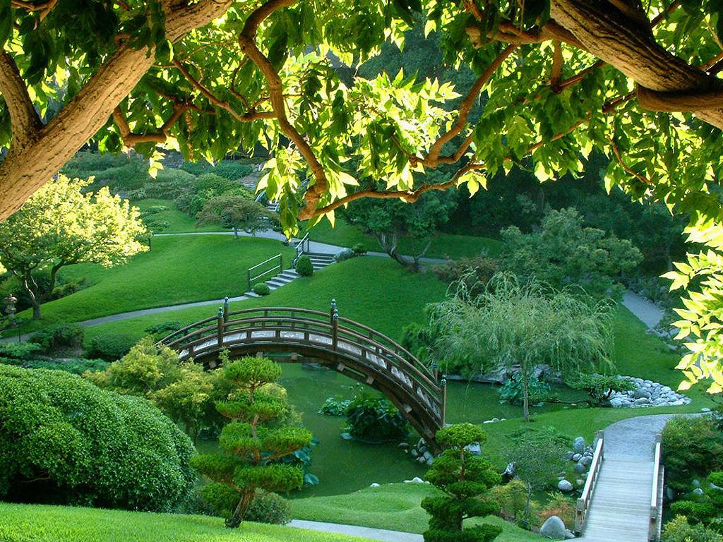 Wallpaper downloads, wallpaper, Japanese Green Garden wallpaper