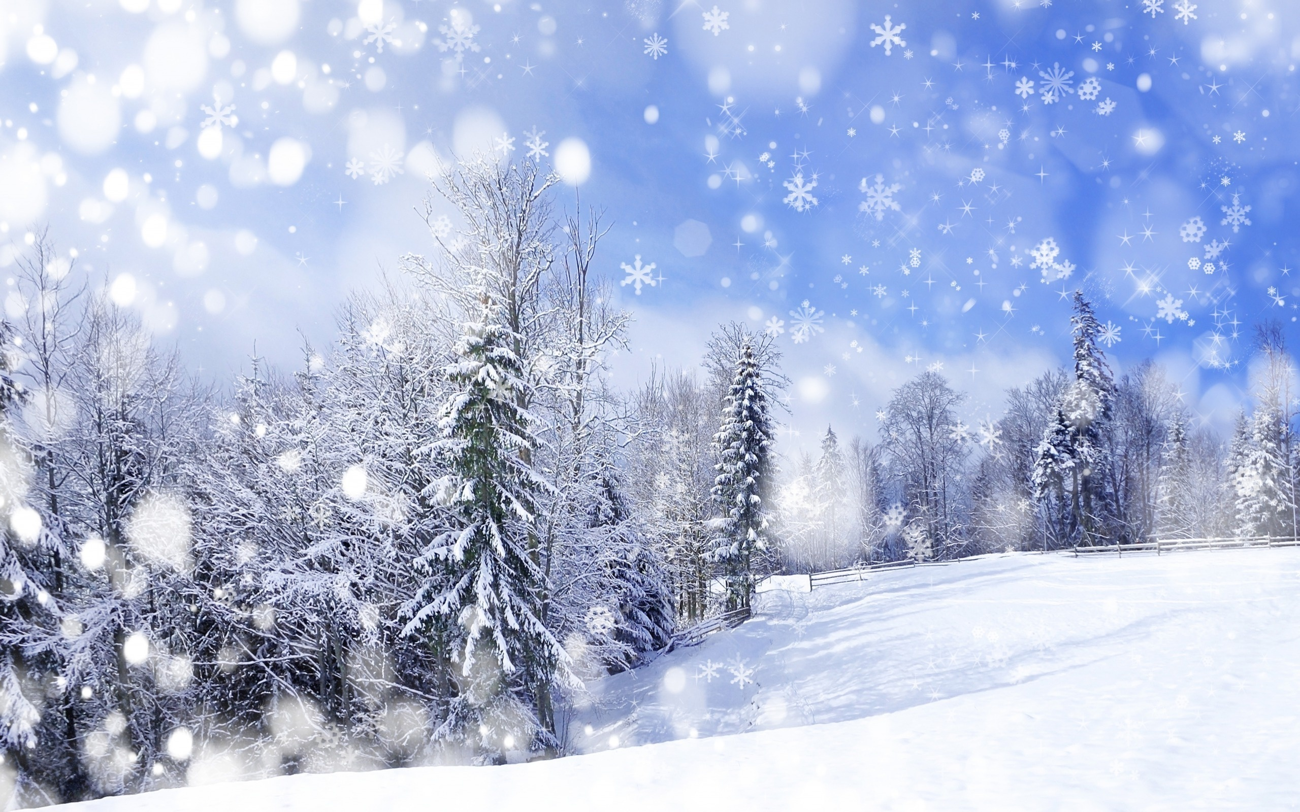 desktop wallpaper winter themes   wwwwallpapers in hdcom 2560x1600