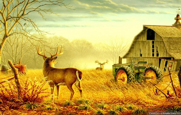 Ultra Hd Wallpapers 8k Resolution 7680x4320 Select resolution 600x380
