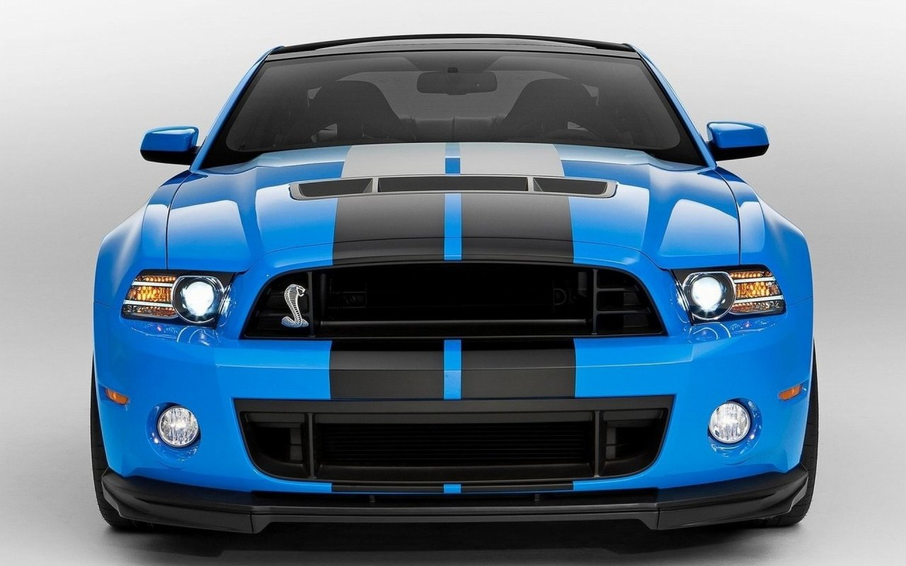 Ford Mustang Shelby GT500 2013 1280x800 WallpapersFord Mustang 1280x800