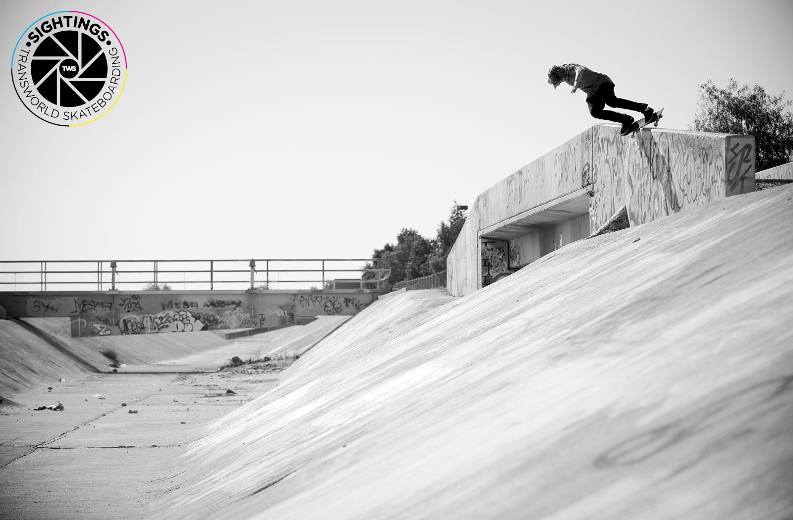 element skateboards wallpaper 1600x1050