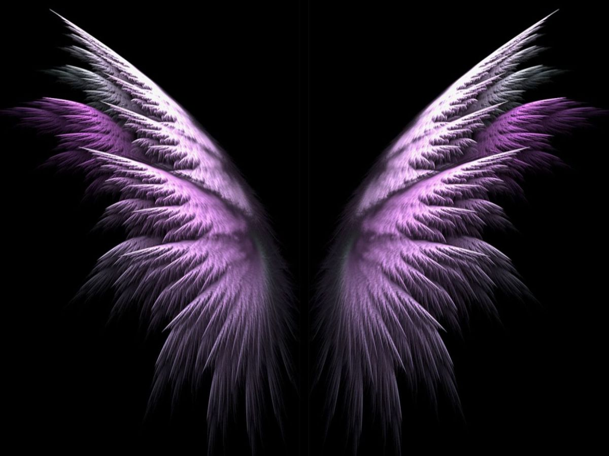 Free Download Purple Angel Wings Wallpaper Forwallpapercom