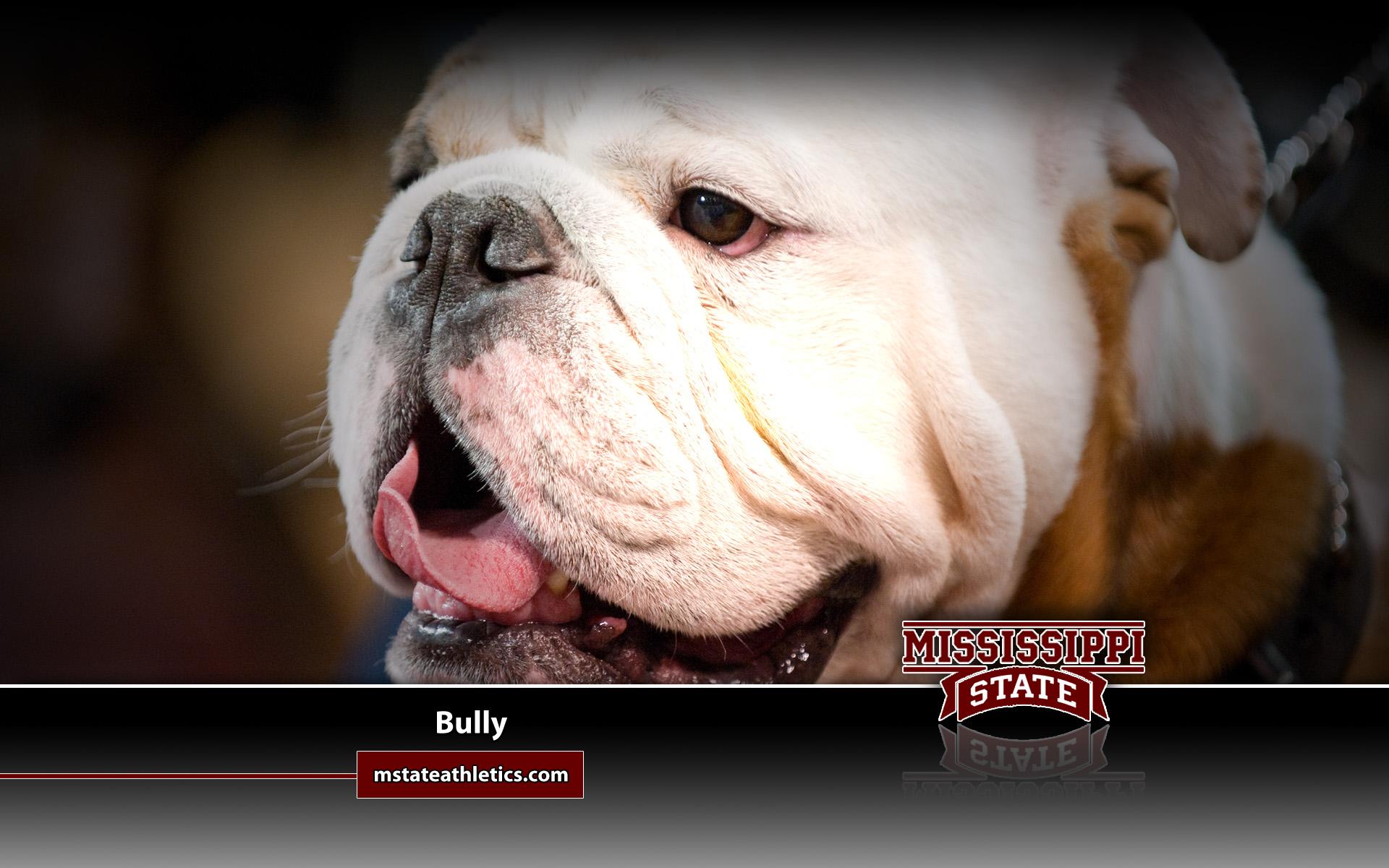 Mississippi State University Bulldog wallpaper   236499 1920x1200