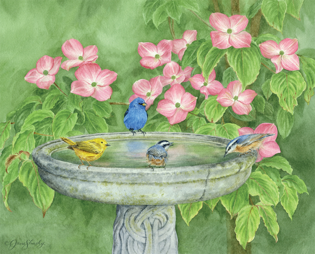 LANG Desktop Wallpapers June 2015 Birds In The Garden 1024x827