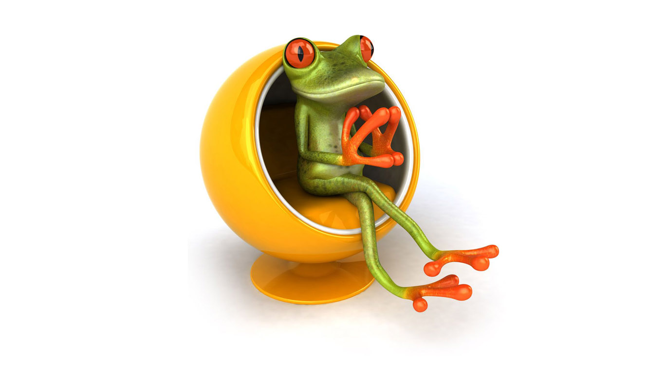 Funny 3d Cartoon Wallpapers: Funny Frog Wallpaper Desktop