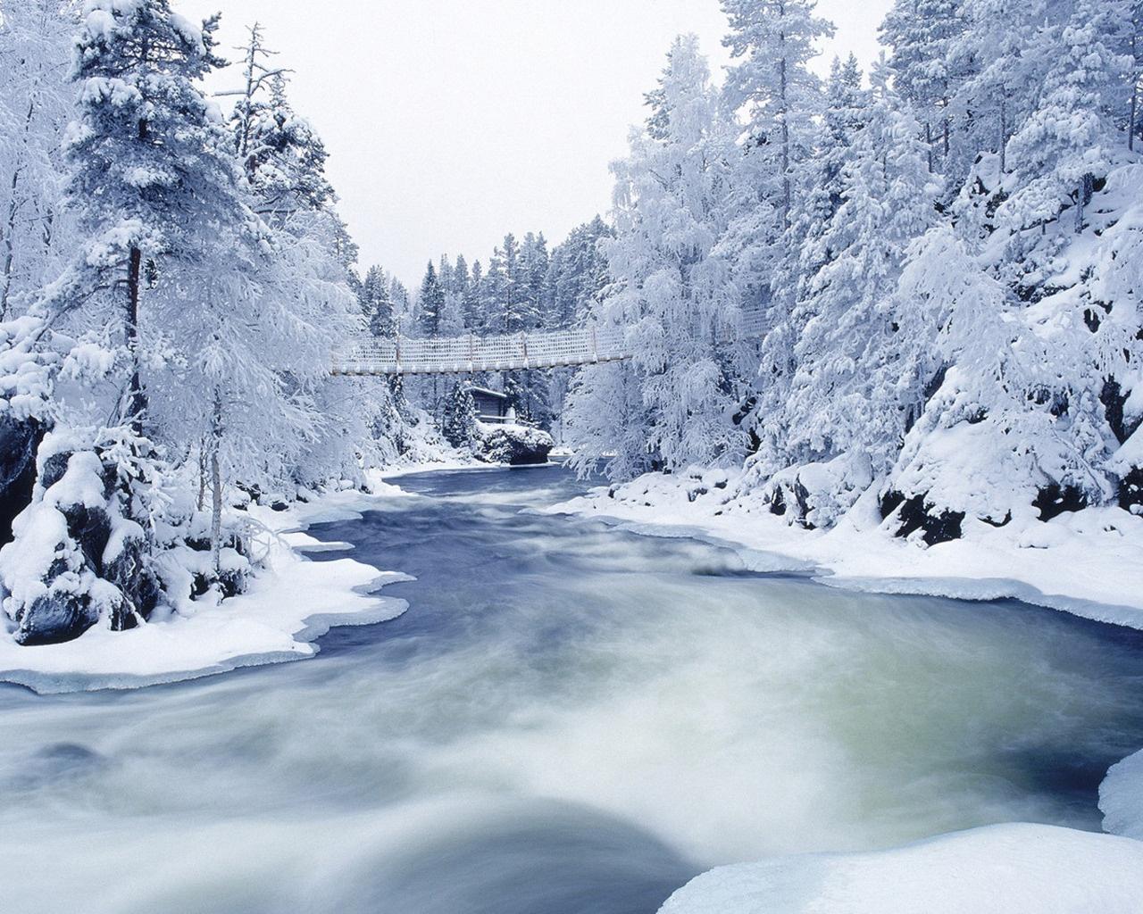 Winter wallpapers Winter Forest 019431 jpg 1280x1024