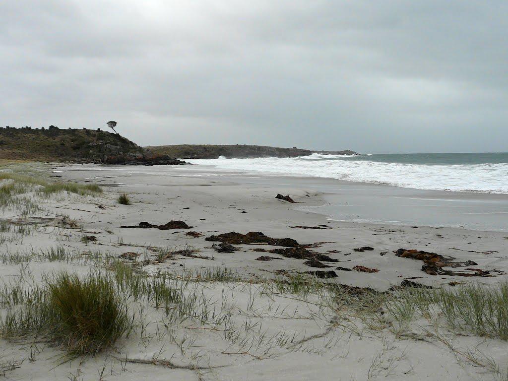Panoramio   Photo of Overcast Winter Beach Scene 1024x768