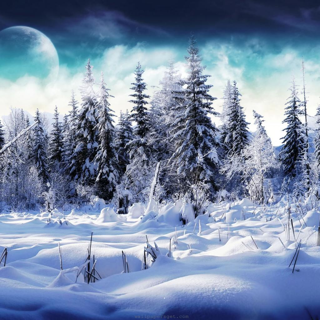 iPad Wallpapers Download 2012 Christmas Winter 1024x1024